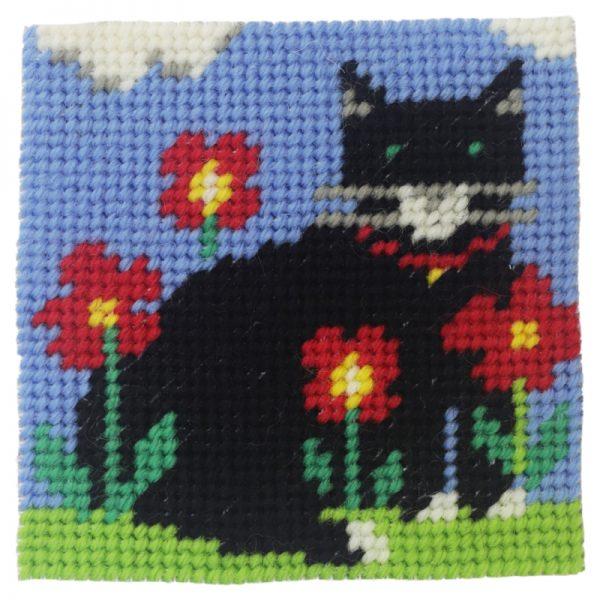 Black Cat Starter Kit